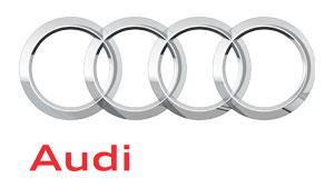 Audi RS3 (8V) Sportback 2015-17